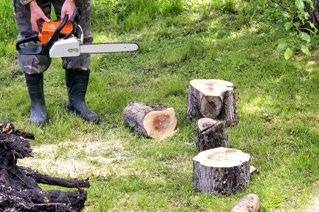 Tree Service-Carrollton TX Landscape Designs & Outdoor Living Areas-We offer Landscape Design, Outdoor Patios & Pergolas, Outdoor Living Spaces, Stonescapes, Residential & Commercial Landscaping, Irrigation Installation & Repairs, Drainage Systems, Landscape Lighting, Outdoor Living Spaces, Tree Service, Lawn Service, and more.